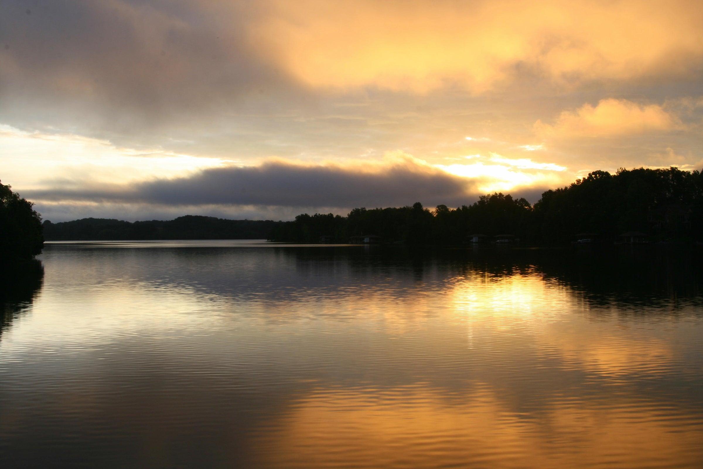 Rarity sunset ariel