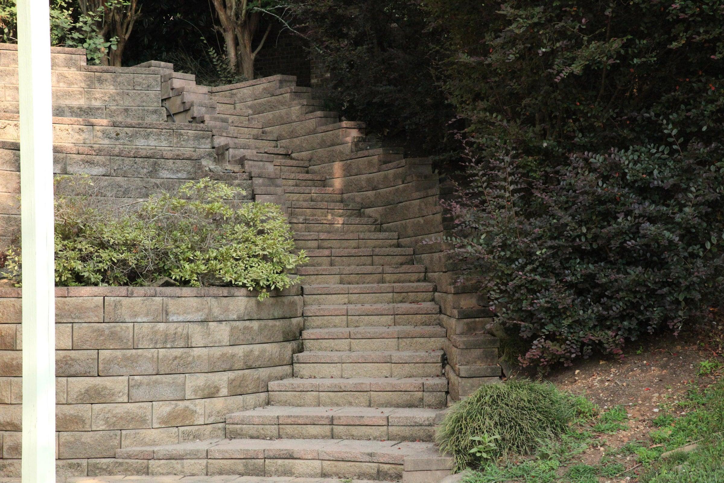 1 back steps