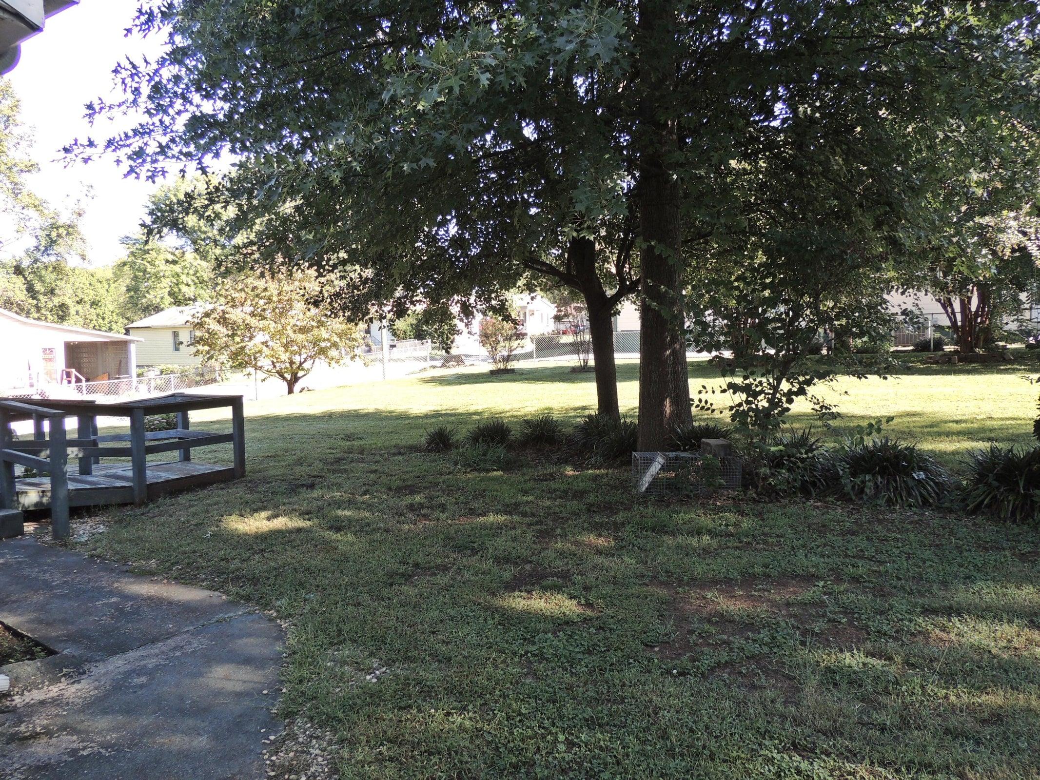 Side Yard View 3