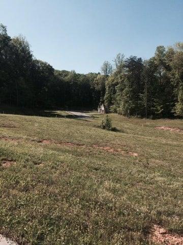 Lot #50 N Taube Lane, Oak Ridge, TN 37830