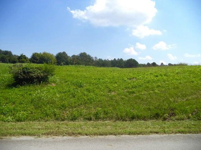 Lot 137 Marble Bluff Drive, Kingston, TN 37763