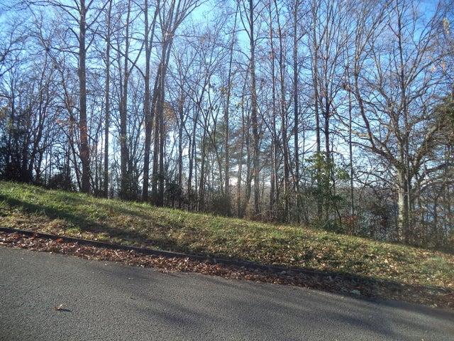 Lakeview Drive, Harriman, TN 37748