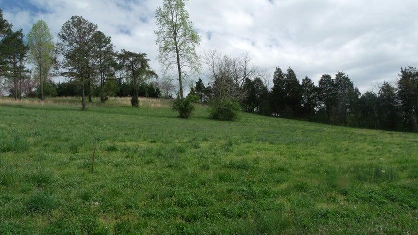 Lot # 3 Remmington Drive, Maynardville, TN 37807