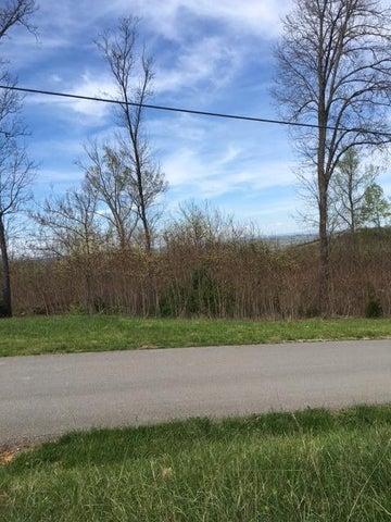 Hickory Pointe Lane, Maynardville, TN 37807
