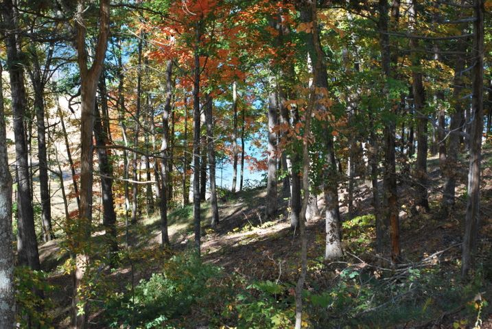 Hickory Pointe Lot 121, Maynardville, TN 37807