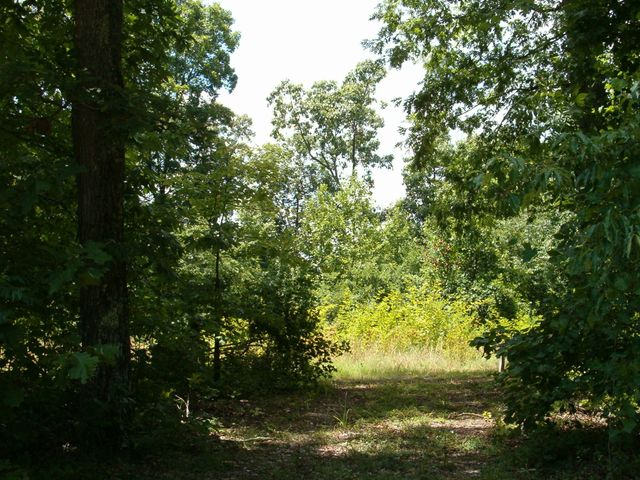 30 Acres of quiet and peace, in East Kingston.