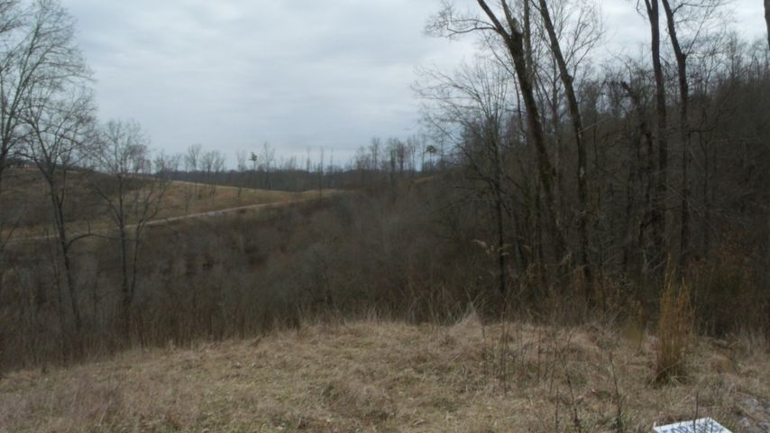 Lot 175 Eagle Cove Pkwy, Maynardville, TN 37807