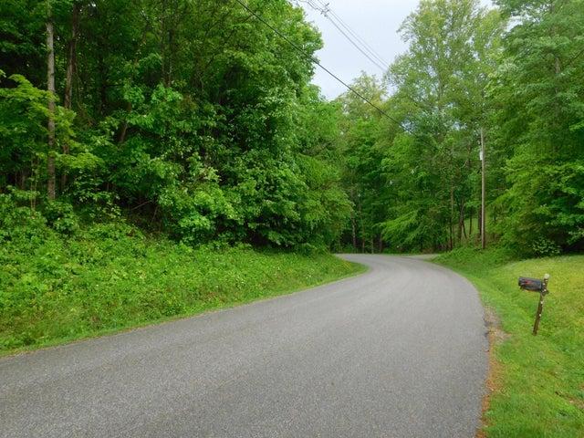 N Shorewood Drive, Caryville, TN 37714