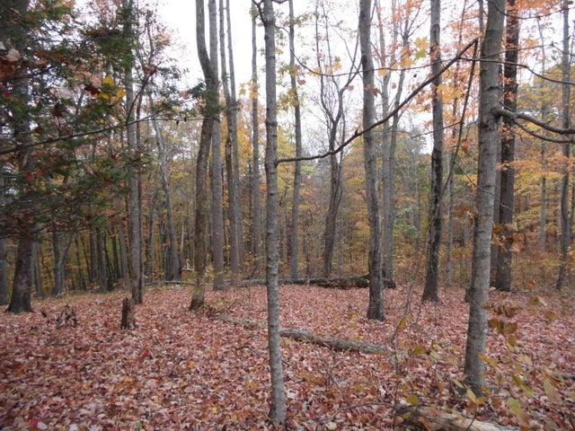 Running Deer Tr, Caryville, TN 37714