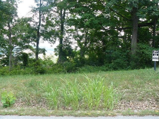 Lot 15 Smokey Quartz Blvd, New Tazewell, TN 37825
