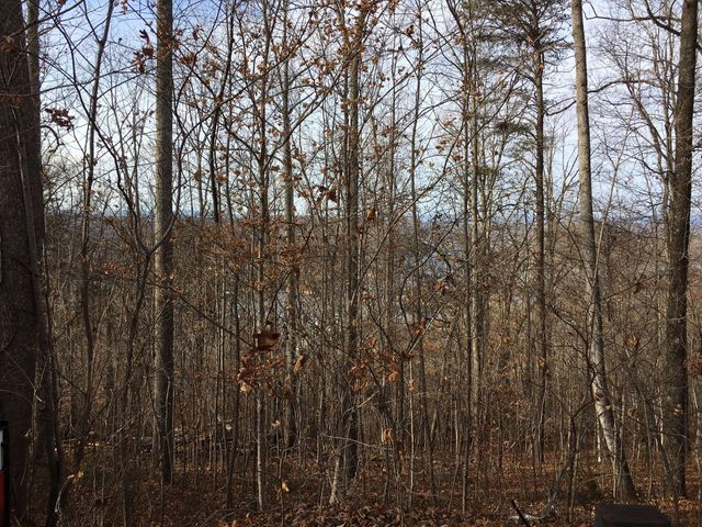 Lot 15 Sara Lane, Maynardville, TN 37807