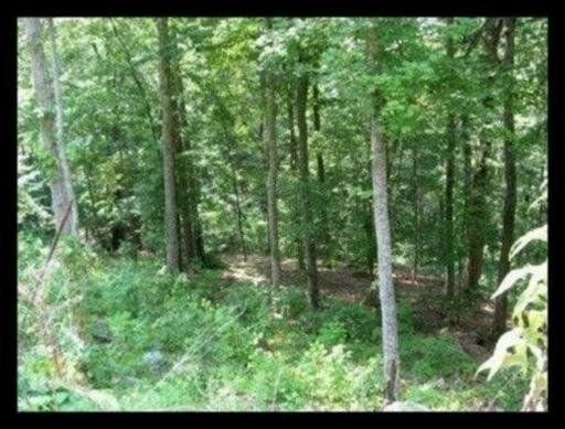 Lot 305 Cherrywood Lane, Sharps Chapel, TN 37866