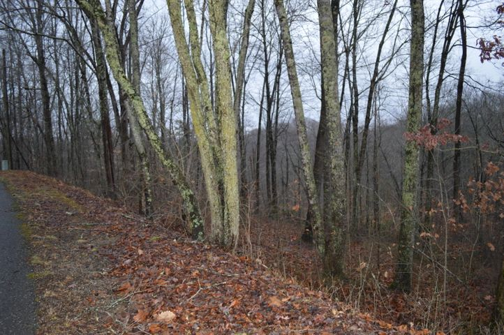 Lot 23 Cove Norris Rd, Caryville, TN 37714
