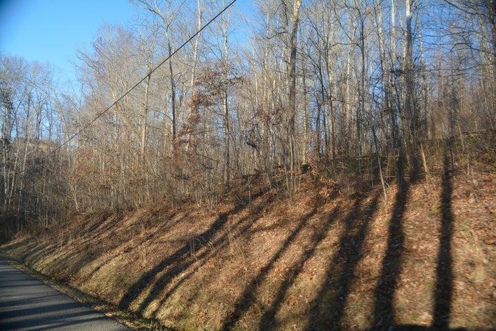 Country Oaks Lane, Lafollette, TN 37766