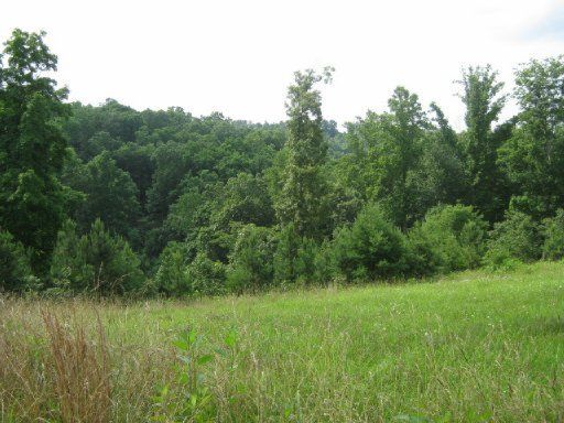 Big Pine Point, Lafollette, TN 37766