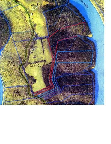 Lot 20 Jones Ridge Rd, Speedwell, TN 37870