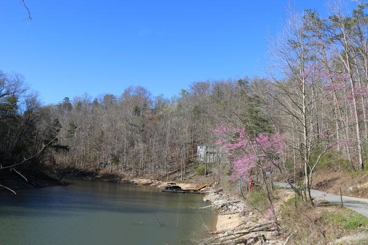 View Of The Lake Drive, Jacksboro, TN 37757