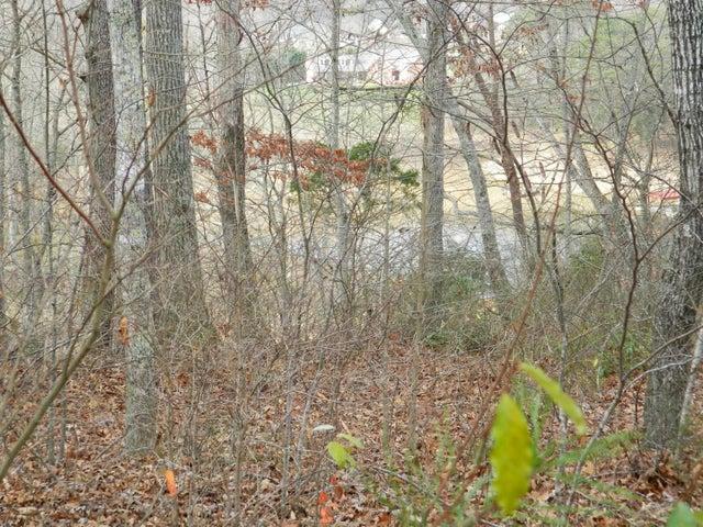 Bluff Trace Lane, Jacksboro, TN 37757