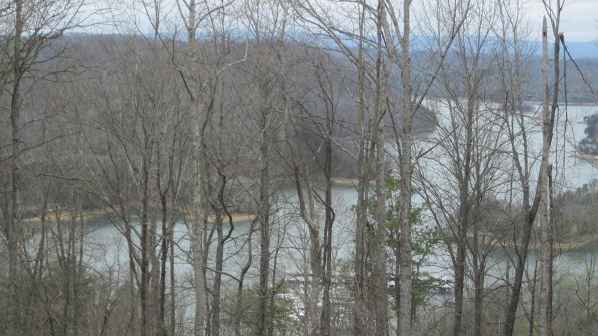 Nice view of Norris Lake and Mountains...