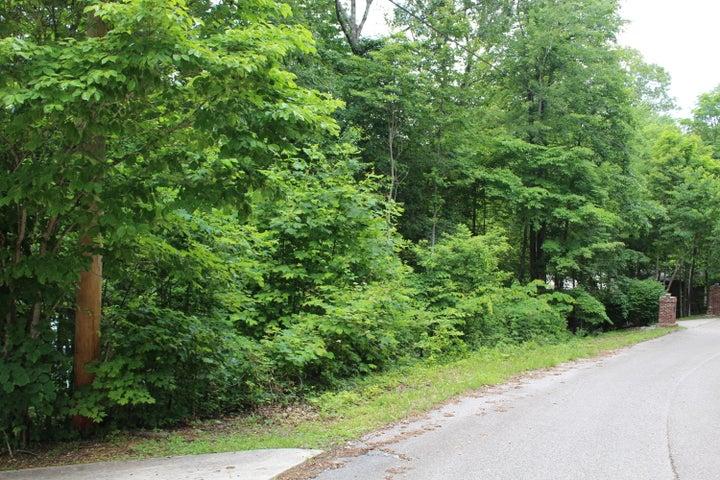 Street View from neighboring driveway to neighboring driveway