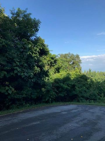 Lot 173 Eagle Cove Pkwy, Maynardville, TN 37807