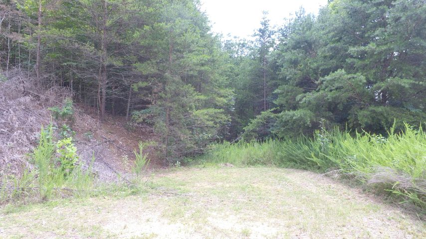 Lot 880 Clear Water Rd, New Tazewell, TN 37825