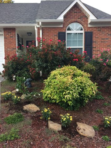 11126 Anchorage Circle, 10, Knoxville, TN 37934