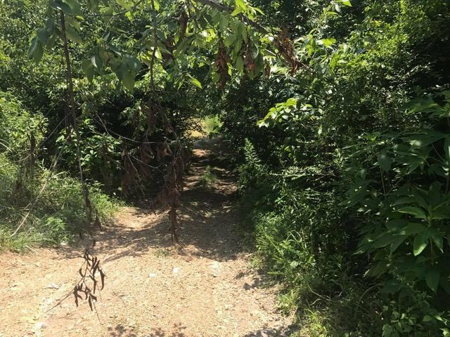 Lost Branch Rd, Sevierville, TN 37862