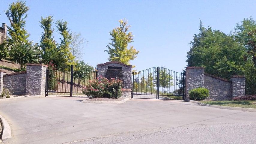 Grande Vista Drive, Sevierville, TN 37876