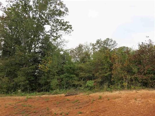 Lot 15 Ten Mile Lane, Ten Mile, TN 37880