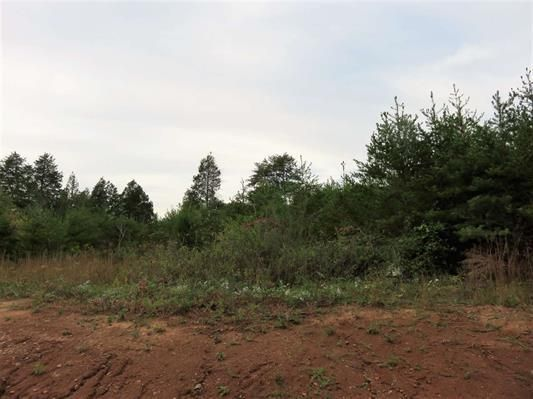 Lot 14 Ten Mile Lane, Ten Mile, TN 37880