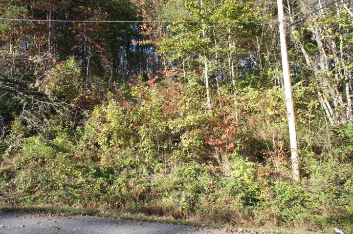 Lot 20 Bakers Circle, Maynardville, TN 37807