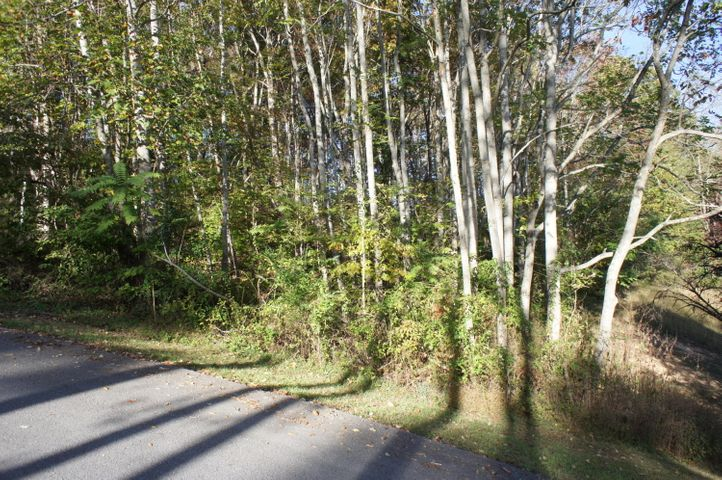 Lot 21 Bakers Circle, Maynardville, TN 37807