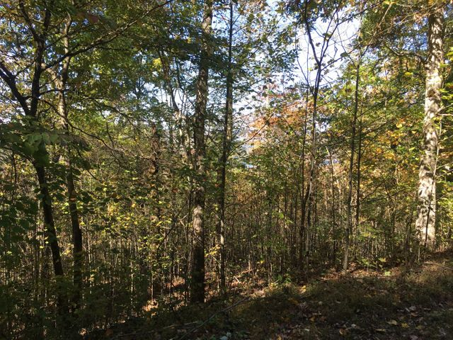 Lot 62 Overlook Trail, Maynardville, TN 37807