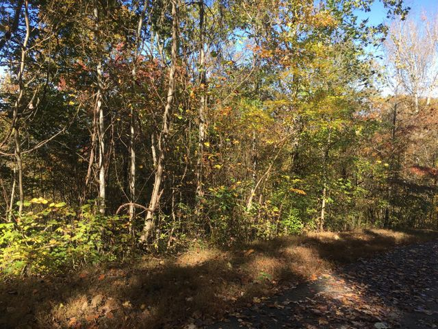 Lot 63 Overlook Trail, Maynardville, TN 37807
