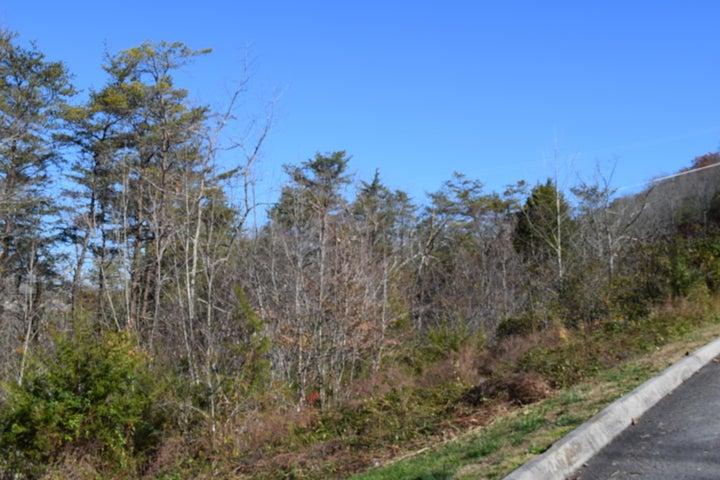 728 Bluegreen Way, Tazewell, TN 37879