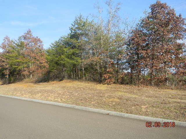 Lot 88 Red Wing Drive, Vonore, TN 37885