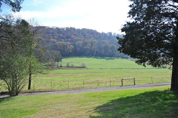 Fenced Pasture & Wooded Mountain