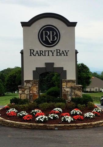 1600 Rarity Bay Pkwy, Vonore, TN 37885