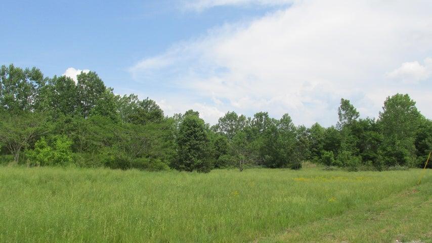 Mose Drive, Sparta, TN 38583
