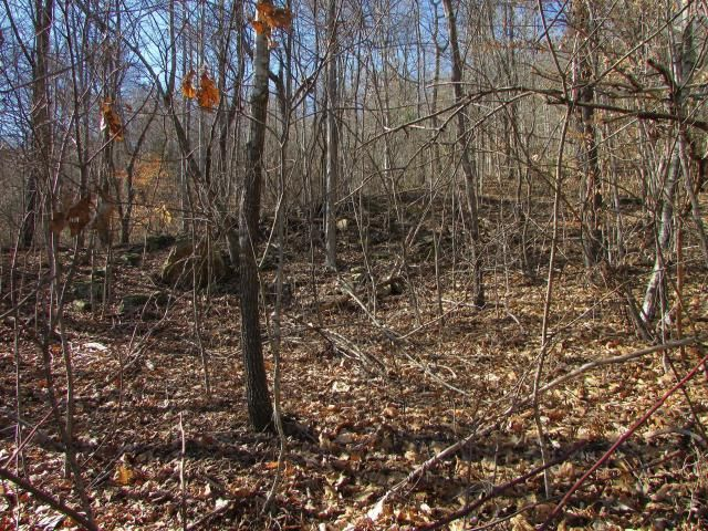 Lot 571 Clear Water Rd, New Tazewell, TN 37825