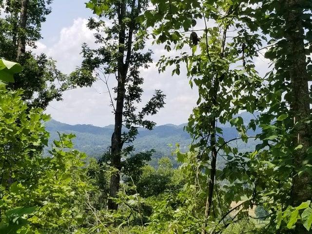 Tract 5 Clabo Mountain Lane, Sevierville, TN 37862