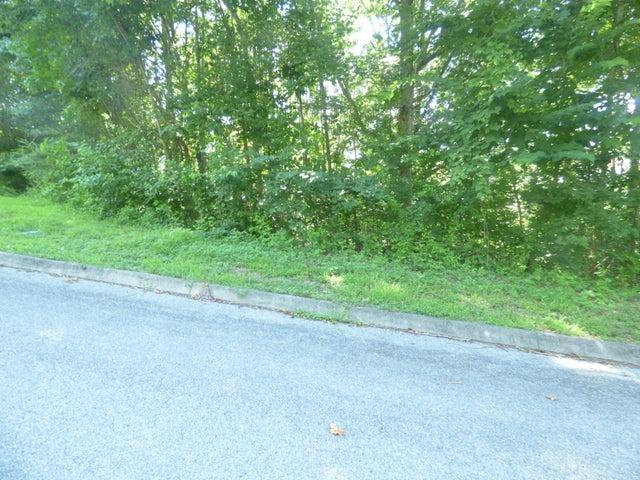 Lakeview Dr, Lot 1, Harriman, TN 37748