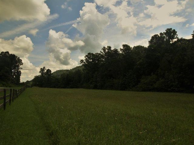 Wide open pasture abuts a private, forested homesite