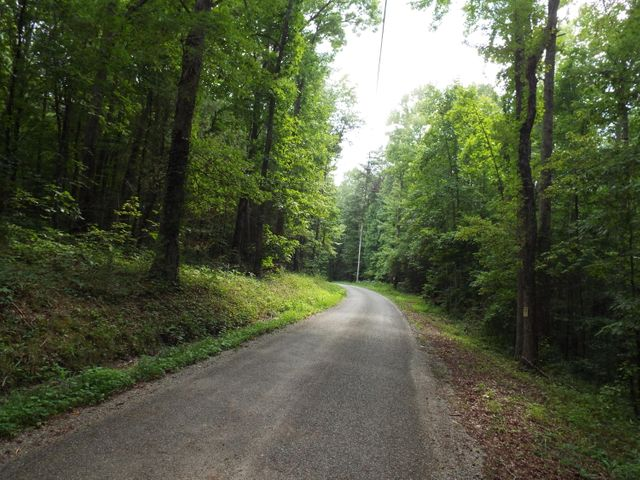 57.5 Acres Firetower Rd, Grandview, TN 37337