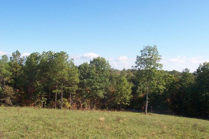 Nichol Creek Drive, Jamestown, TN 38556