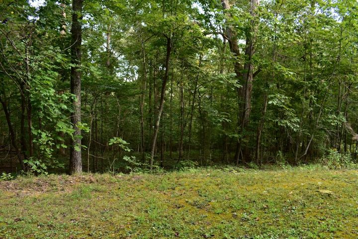 Lot176&177 Scenic Lakeview Drive, Spring City, TN 37381