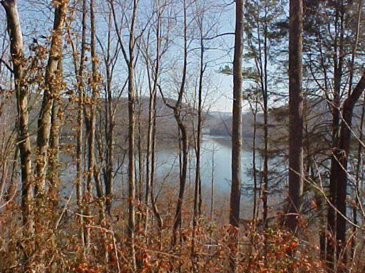 Lot 329 Marble Point Way, New Tazewell, TN 37825