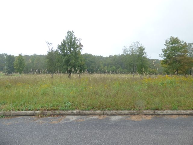 Stump Hollow Rd, Lots 5 & 6, Spring City, TN 37381