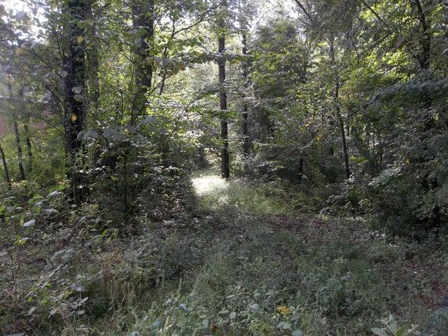 Sequoyah Lane, Andersonville, TN 37705